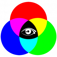 cropped-TPL.Logo_.512.png